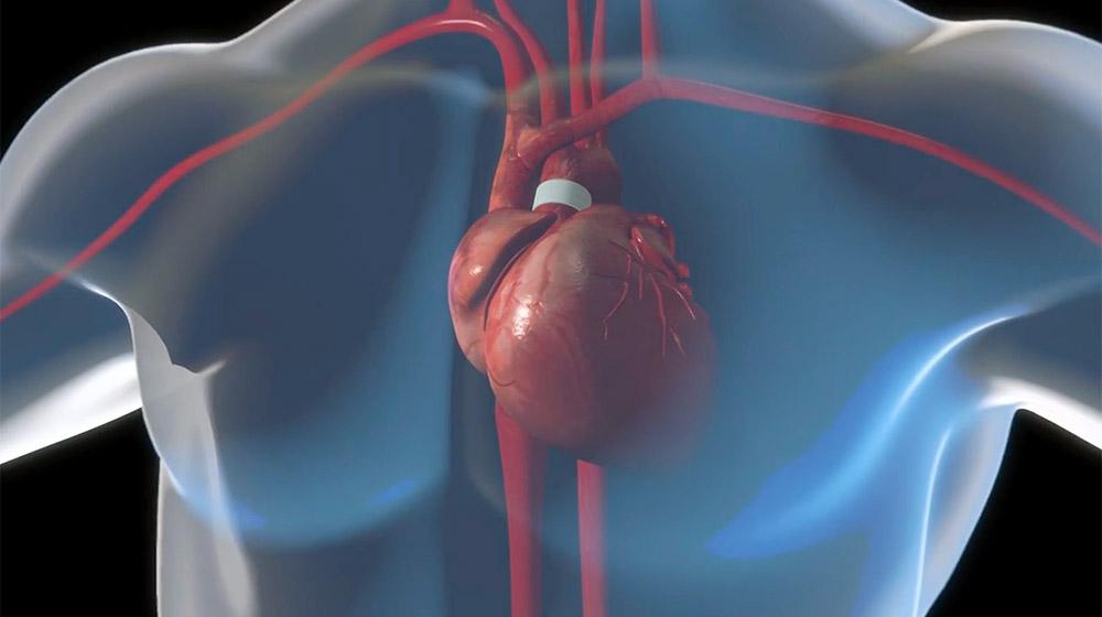 Illustration of heart in human body
